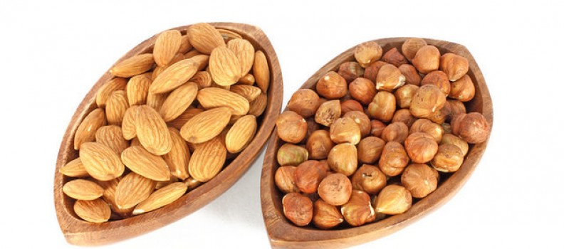 Almond & Hazel Nut Mylks
