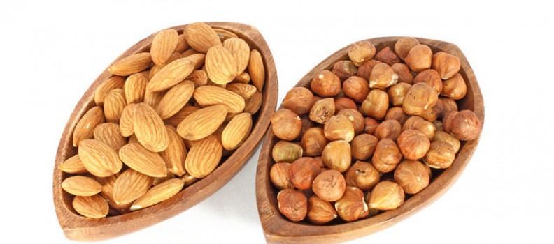 Almond & Hazel Nut Mylks