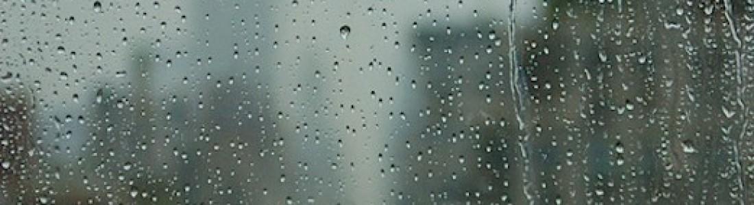Rainy Day Shake